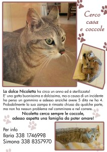 Nicoletta x web